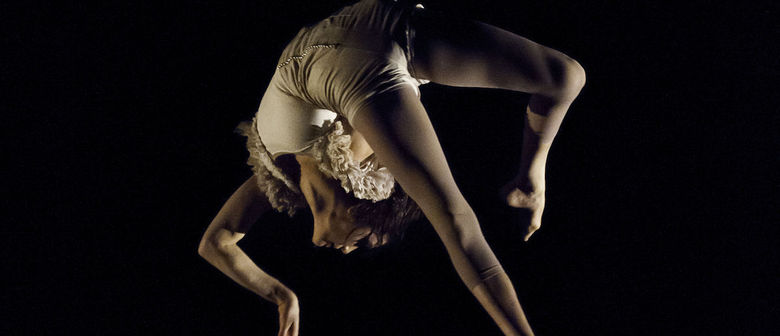 Vague de Cirque's Carousel and Clothesline - Herald Theatre