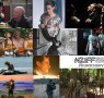 KUWNZ picks NZIFF 2016