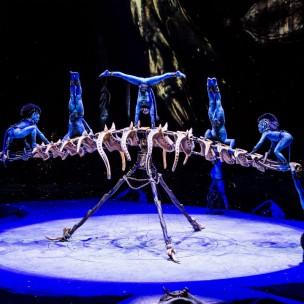 Cirque du Soleil- Toruk - the First Flight-auckland-review