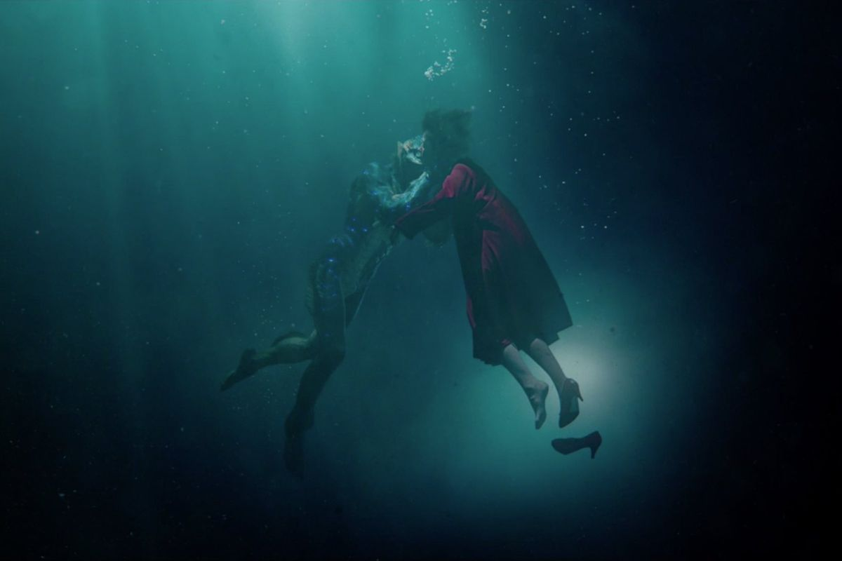 shape-of-water-nz-review