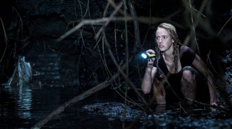 crawl-alexandre-aja-review